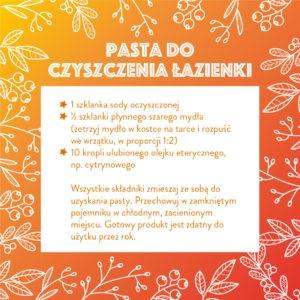 tyle_tego_swieta_czystosc1